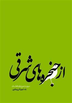 دانلود کتاب از حنجرههای شرقی: سیری در شعر پایداری افغانستان