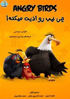 دانلود کتاب صوتی پرندگان خشمگین: چی بمب رو اذیت میکنه؟